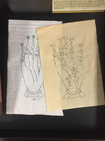 Printed Hands