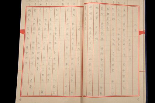Chinese characters on a page.